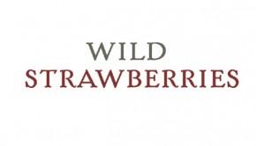 wild strawberries 4